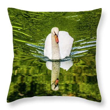 Swan Lake Nature Photo 892 Throw Pillow