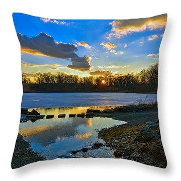 Swan Lake Sunset Throw Pillow