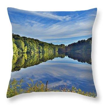 Swan Lake Times Two Throw Pillow