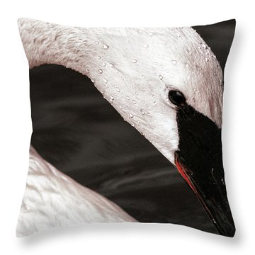 Throw Pillow featuring the photograph Swan Neck by Jean Noren