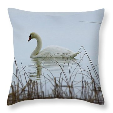 Throw Pillow featuring the photograph Swan Of April by Al Fritz