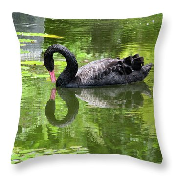 Swan Of Hearts Throw Pillow