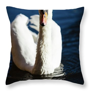 Swan Posing Throw Pillow