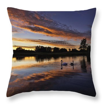 Swan Sunset Throw Pillow