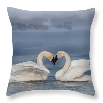 Swan Valentine - Blue Throw Pillow by Patti Deters