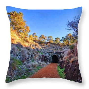 Swan View Railway Tunnel Throw Pillow by Dave Catley