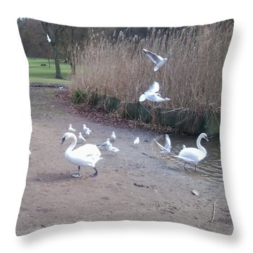 Swans 4 Throw Pillow