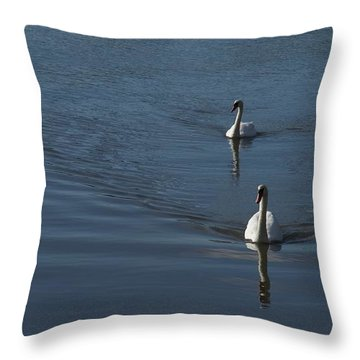 Throw Pillow featuring the photograph Swans On Blue by Charles Kraus