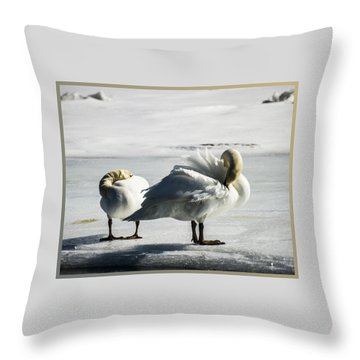 Swans On Ice Throw Pillow