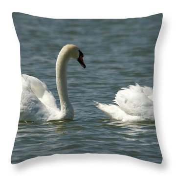 Swans On Lake  Throw Pillow by Cliff Norton