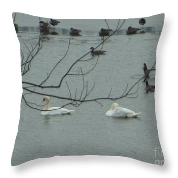 Swans With Geese Throw Pillow
