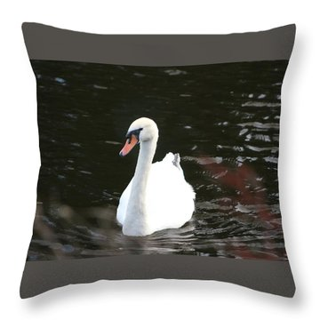 Swans-a-swimming Throw Pillow