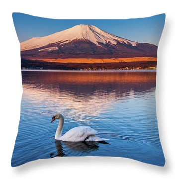 Swany Throw Pillow