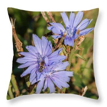 Sweat Bee On A Flower Throw Pillow