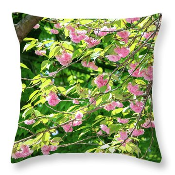 Sweeping Cherry Blossom Branches Throw Pillow