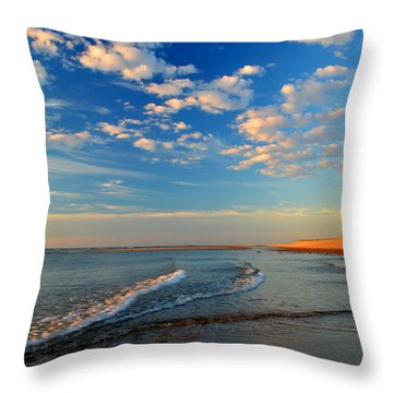 Sweeping Ocean View Throw Pillow by Dianne Cowen