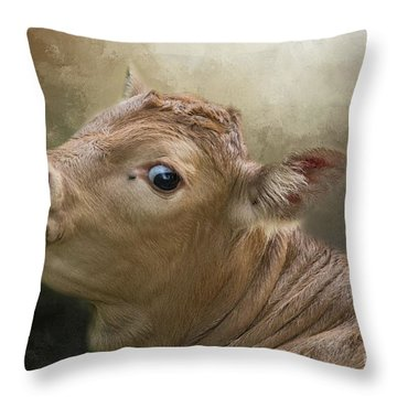 Sweet Baby Throw Pillow