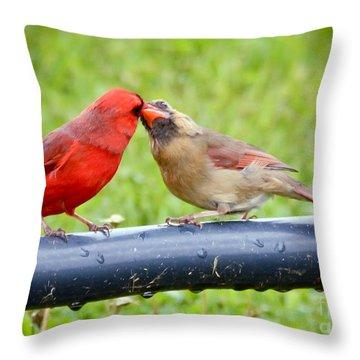 Sweet Cardinal Couple Throw Pillow