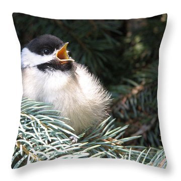 Sweet Chickadee Throw Pillow