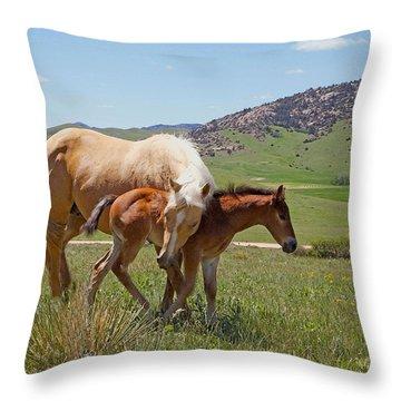 Sweet Comfort Throw Pillow