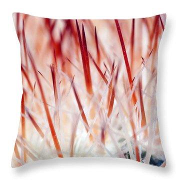 Sweet Gentle Pink Blooming Cacti Throw Pillow