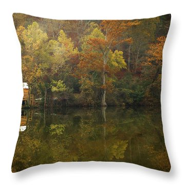 Throw Pillow featuring the photograph Sweet Home by Iris Greenwell