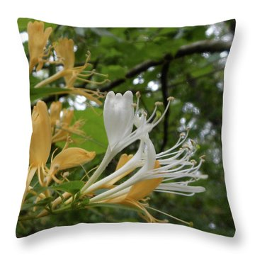 Sweet Honeysuckle Shrub Throw Pillow