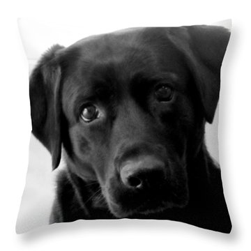 Sweet In Black Throw Pillow