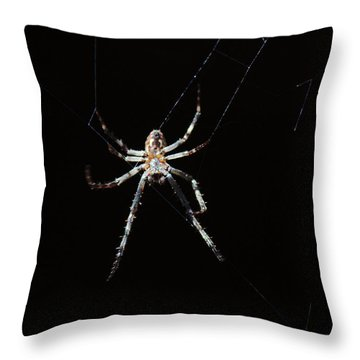Sweet Lady Guarding Shed Throw Pillow
