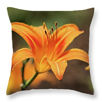 Sweet Lilly In Orange Throw Pillow