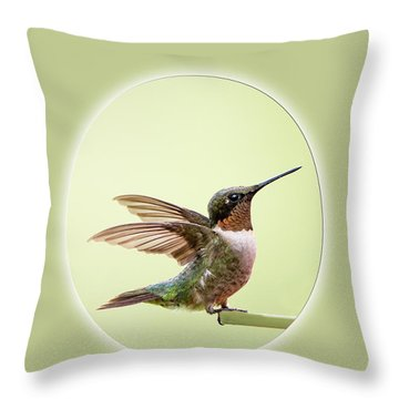 Throw Pillow featuring the photograph Sweet Little Hummingbird by Bonnie Barry