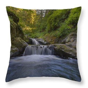 Sweet Little Waterfall Throw Pillow by David Gn