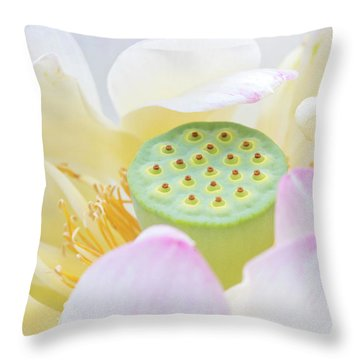 Lotus Seed Throw Pillows