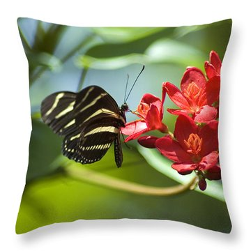 Sweet Nectar Throw Pillow by Carolyn Marshall