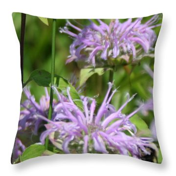 Sweet Nectar Throw Pillow by Rebecca Smith