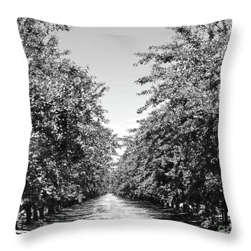 Sweet Path Throw Pillow by Suzette Kallen