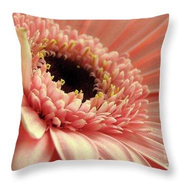 Sweet Peach Gerbera #2 Throw Pillow