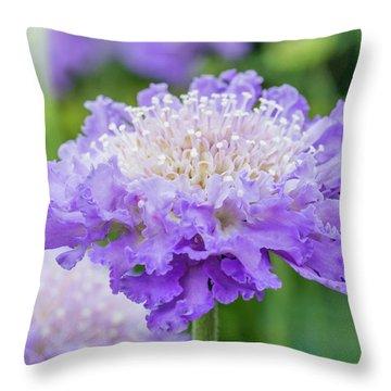 Sweet Petal Throw Pillow