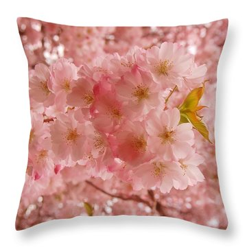 Sweet Pink- Holmdel Park Throw Pillow