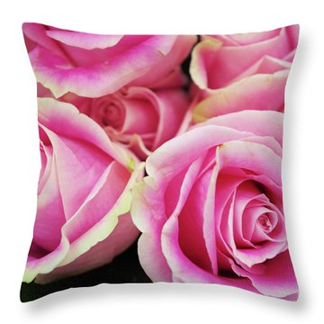 Sweet Rose For All The Lovely Ladies Who Comment On My Work Throw Pillow
