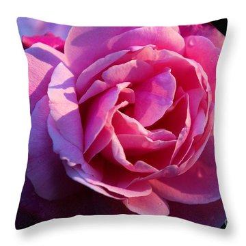 Sweet Rose Throw Pillow