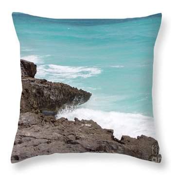 Sweet Saltyness Throw Pillow by Amanda Barcon