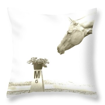 Sweet Scent Of Days Gone By Throw Pillow