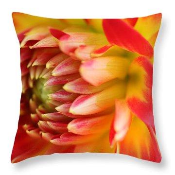 Sweet Spring Throw Pillow