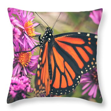 Throw Pillow featuring the photograph Sweet Surrender by Viviana  Nadowski