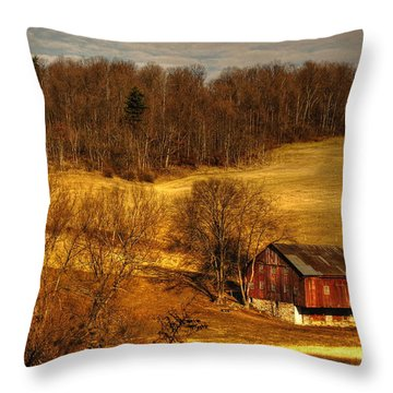 Sweet Sweet Surrender Throw Pillow by Lois Bryan