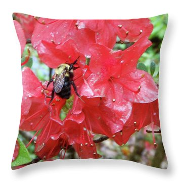 Sweet To Be An Azalea Tree Throw Pillow