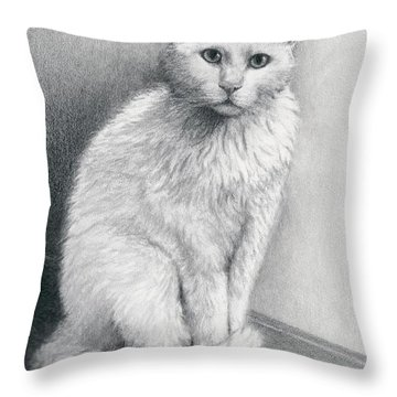 Sweet Toot Throw Pillow by Mary Rogers