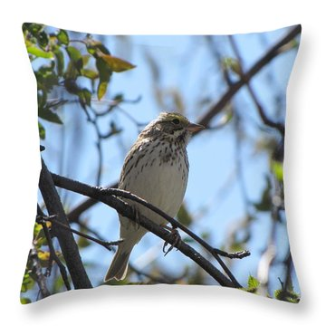 Sweetest Song Throw Pillow