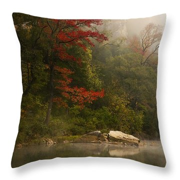 Sweetgum In The Mist At Steel Creek Throw Pillow